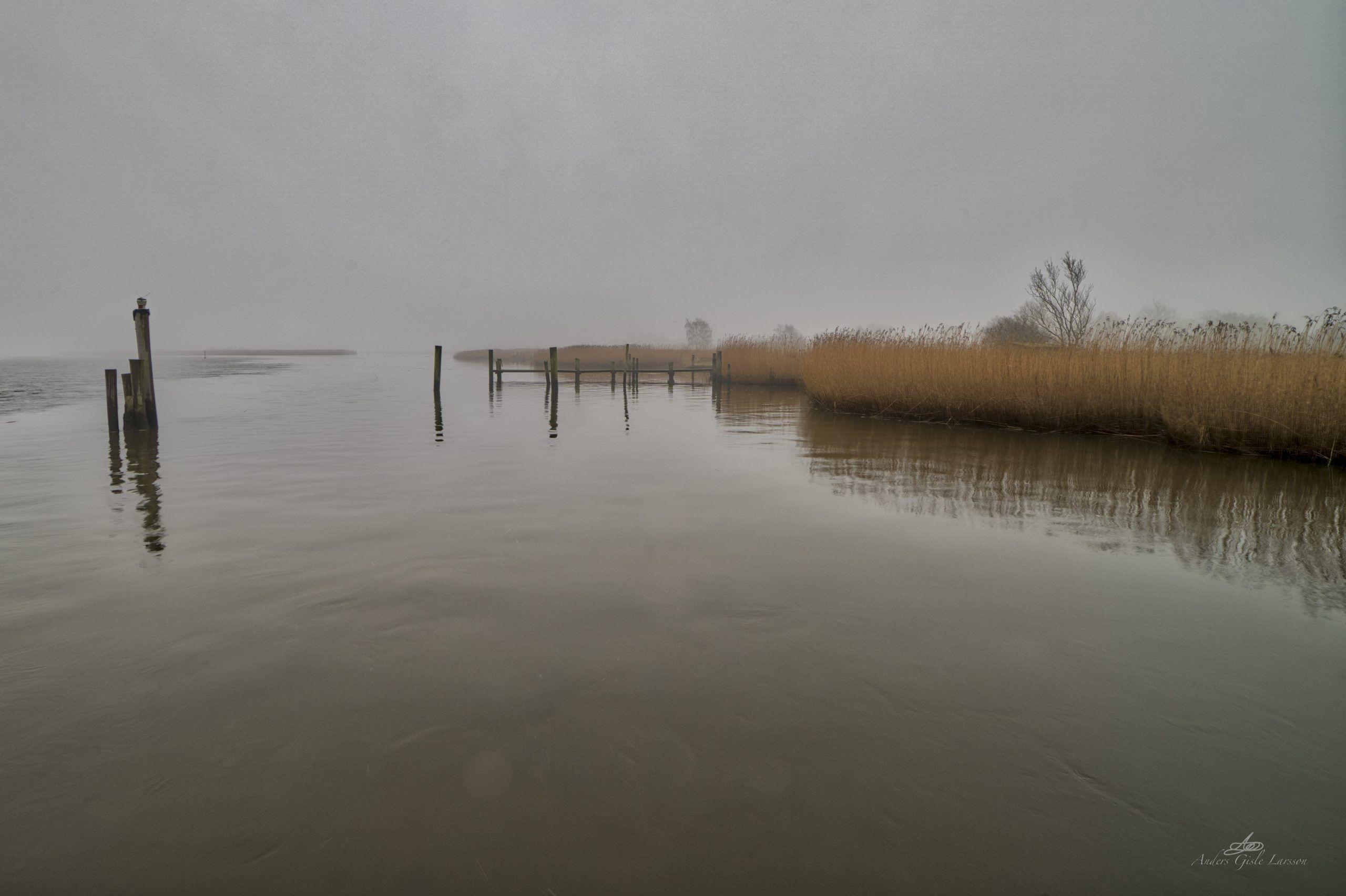 Tåge vand, Manuelt 14mm Vidvinkel, Uge 2, 11/365, Randers Fjord, Uggelhuse, Randers
