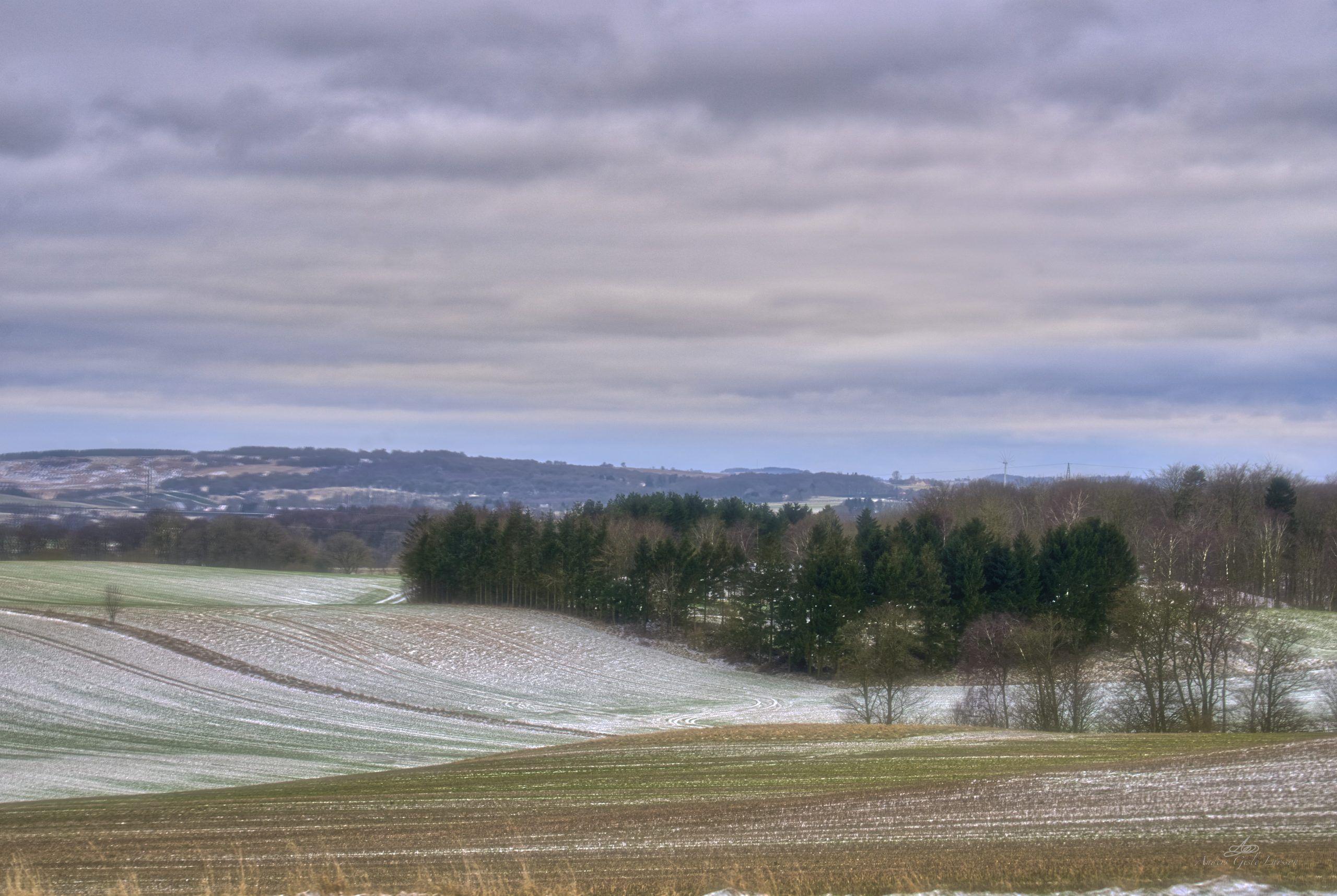 Vinter Light, Orton Effekt, Uge 5, 35/365, Årslev, Randers
