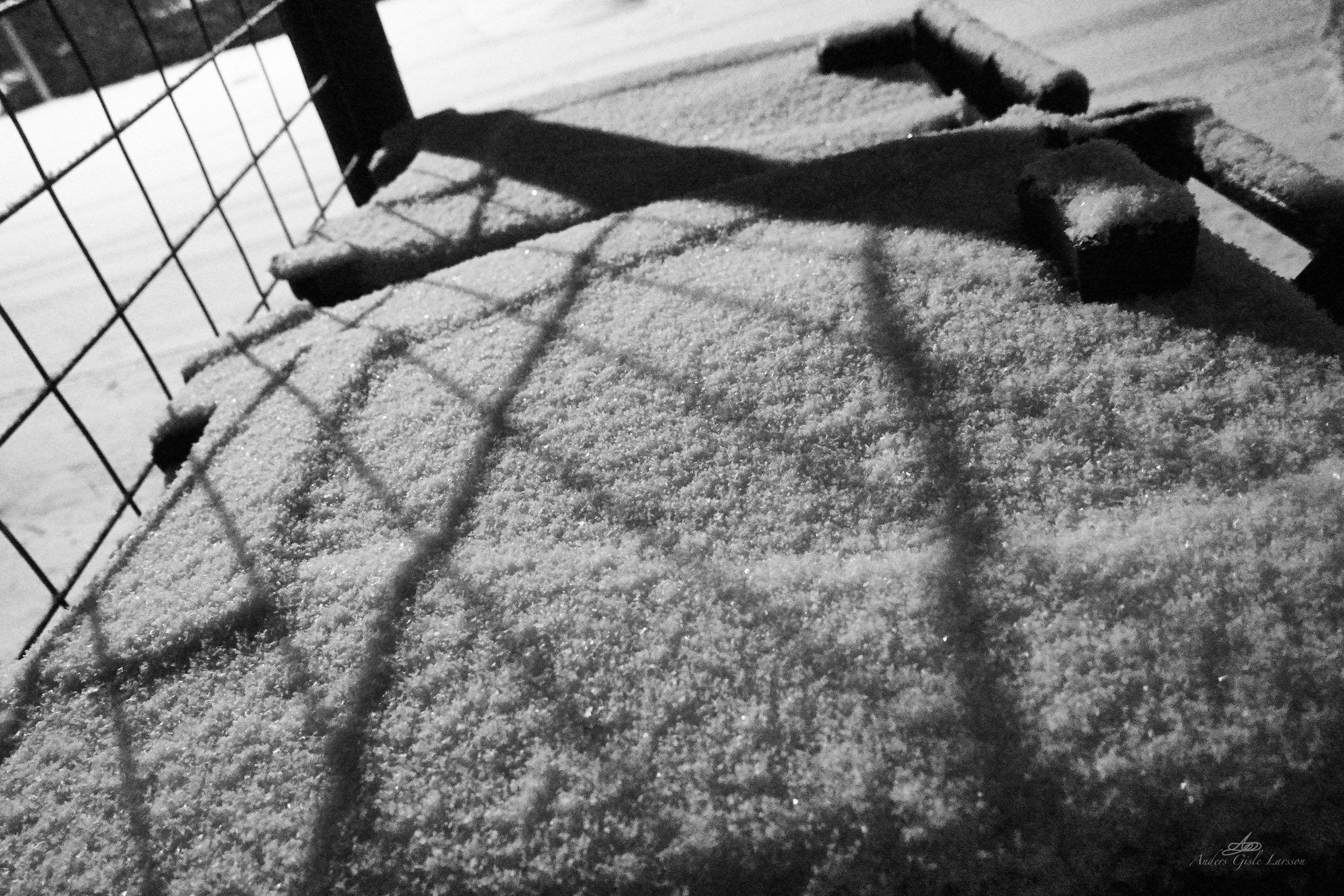 Let falder sneen, Fri leg, Uge 10, 66/365, Assentoft, Randers