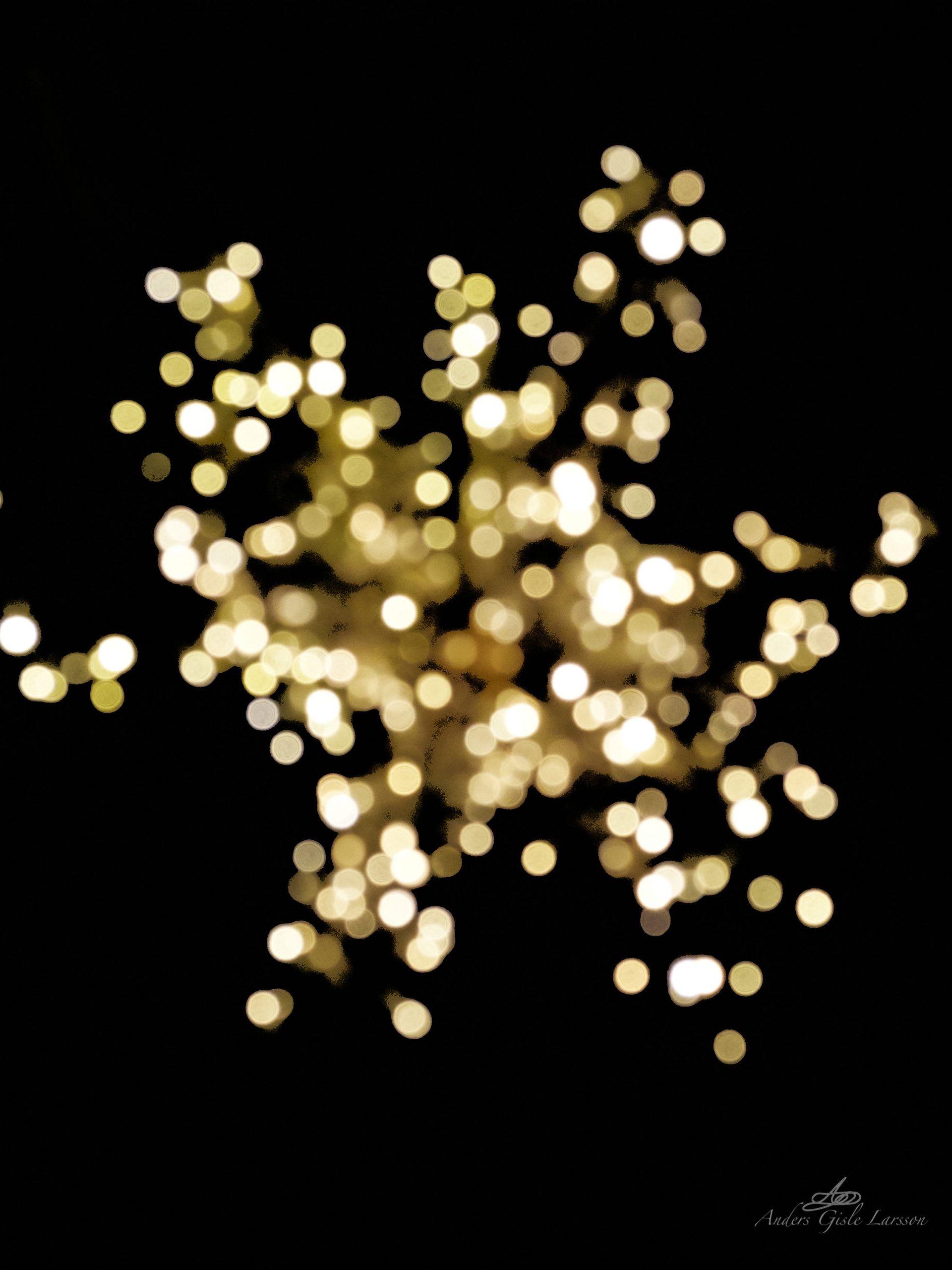 Lille Stjerne, 339/365, Uge 49, Randers