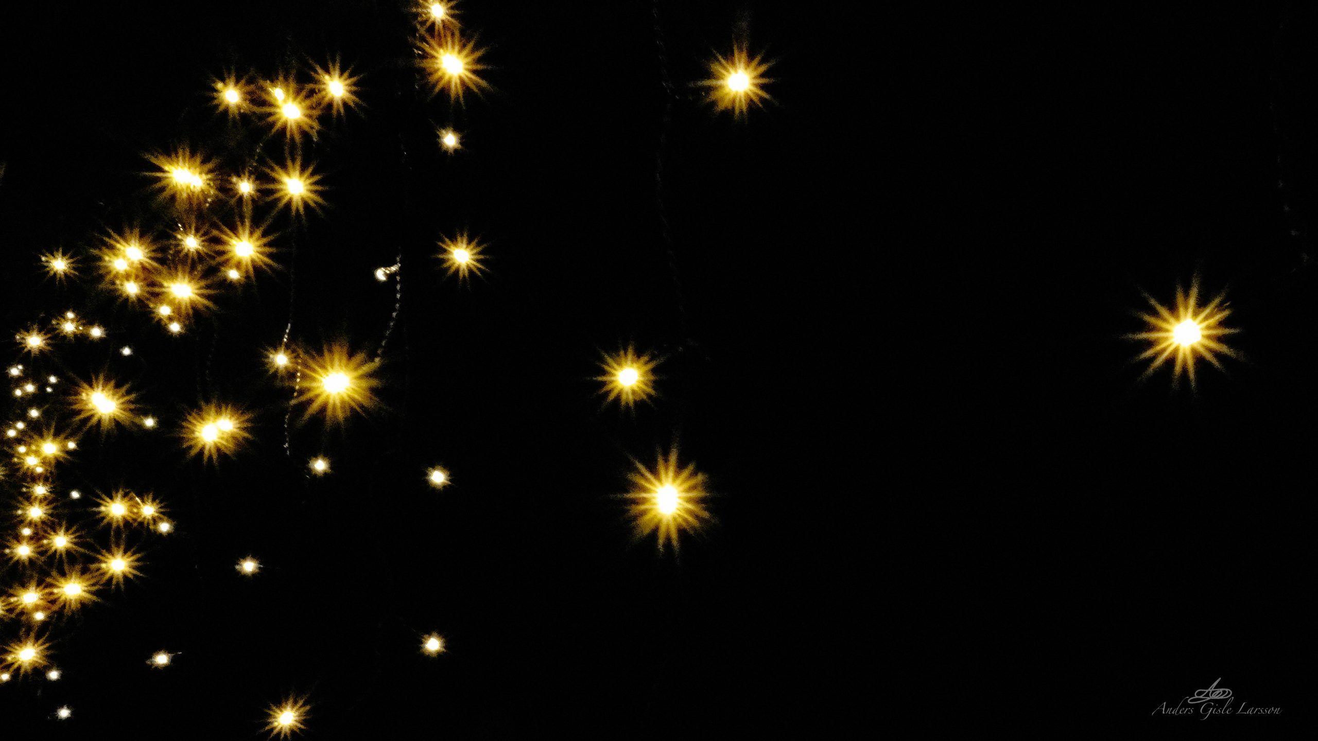 Stardust, 345/365, Uge 50, Lemvig