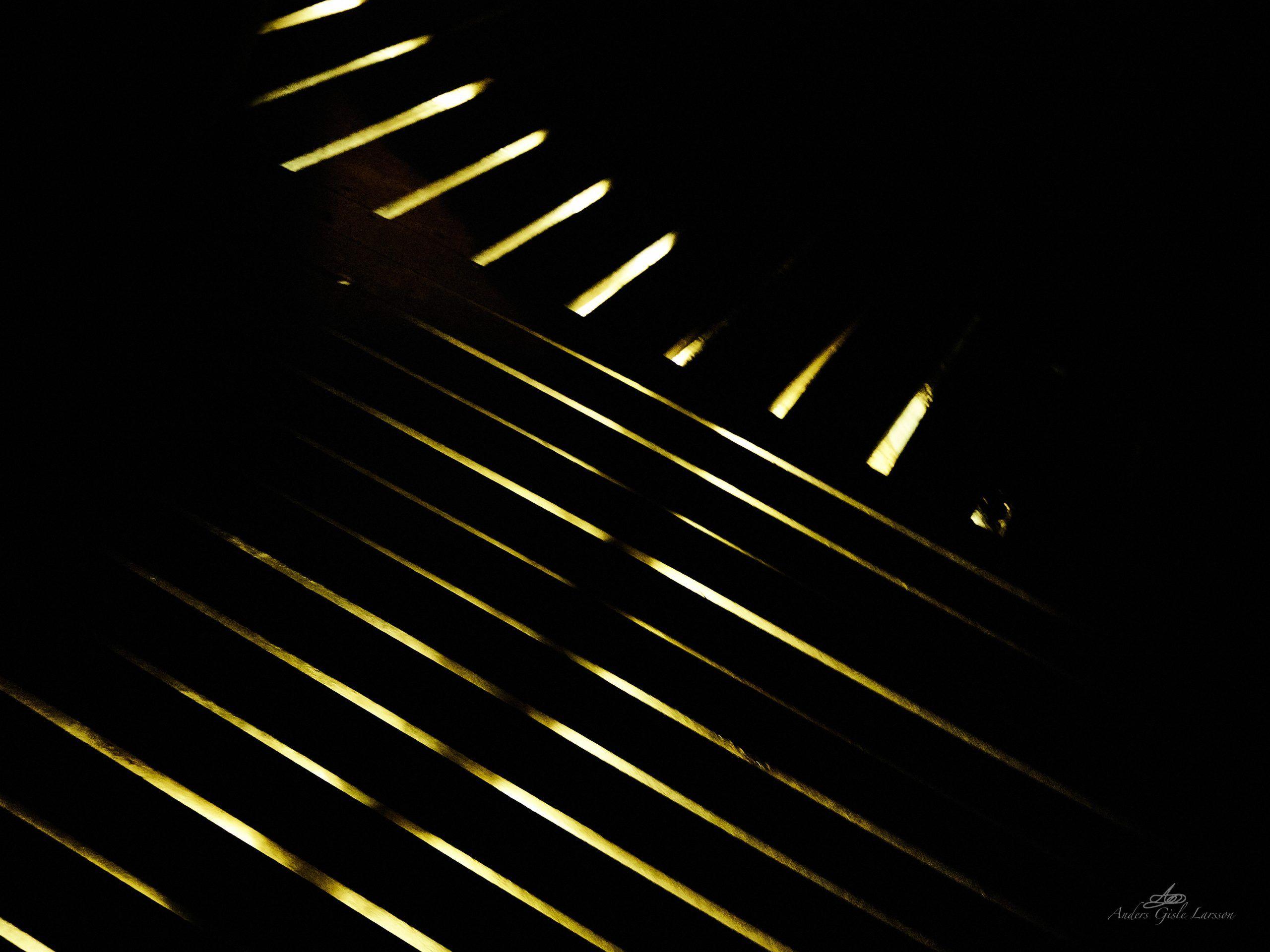 I mørket er alting ...., 349/365, Uge 50, Randers Regnskov, Randers