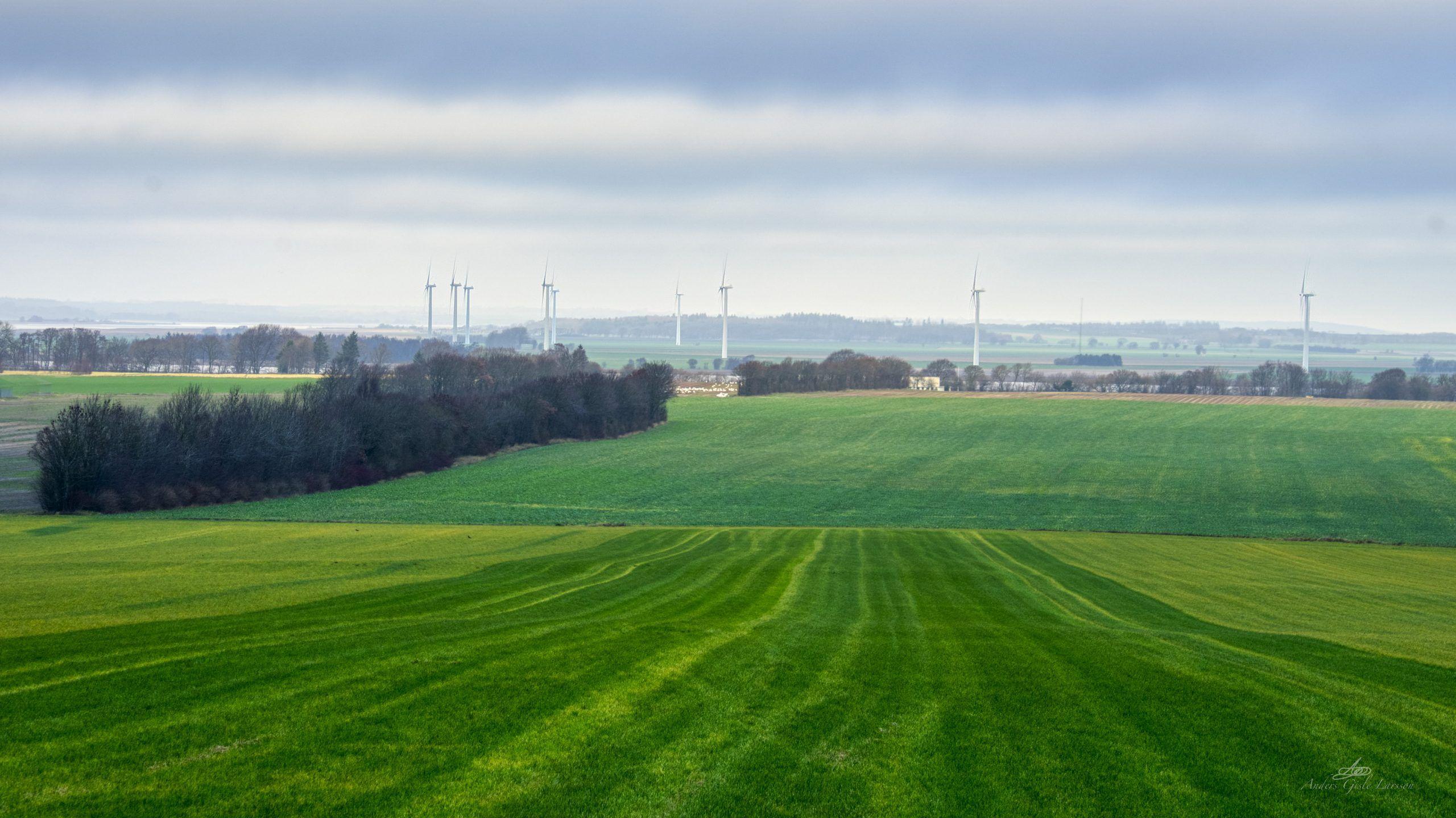 Grøn vind, 361/365, Uge 52, Grund Fjord, Fausing, Randers