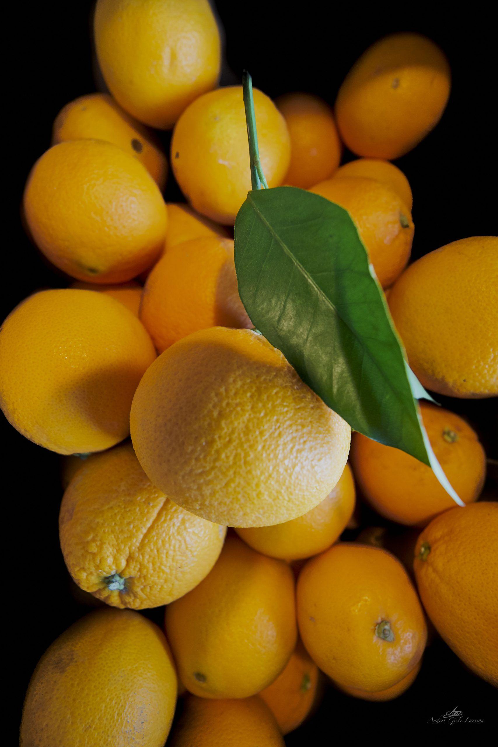 Friske Appelsiner, Uge 11, Assentoft, Randers