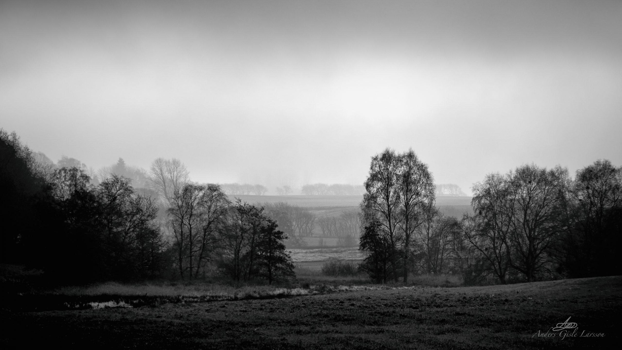 Tåge Landet